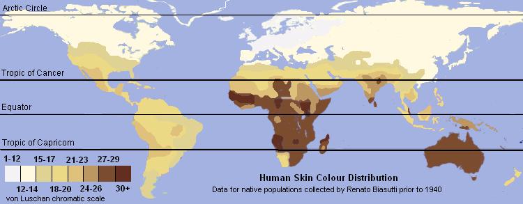 Human Skin Color Distribution